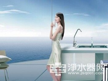 What marketing model water purifier