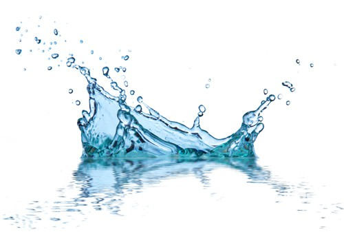 Rapid expansion of domestic water purifier market is gradual