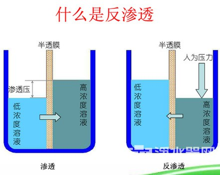 Why R0 reverse osmosis water purifi is so popular